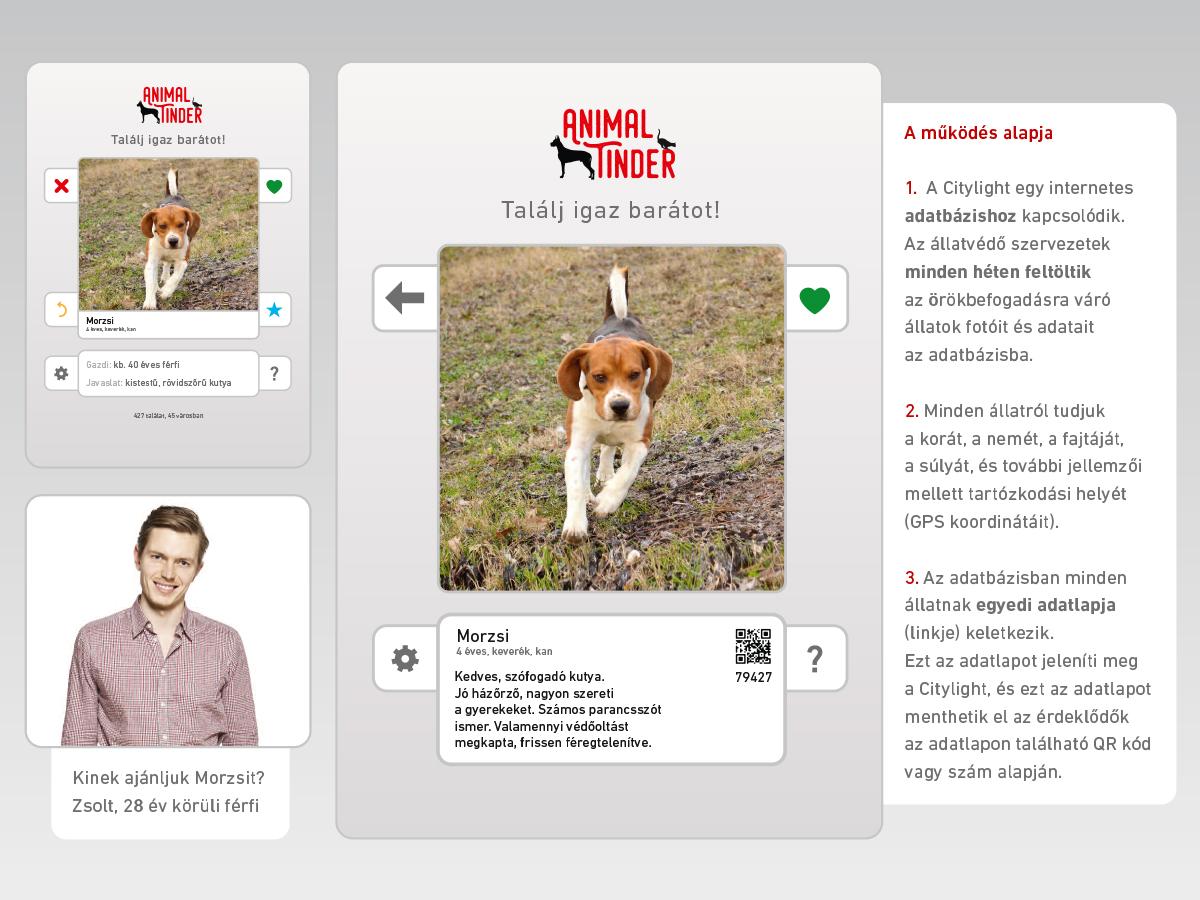 AnimalTinder3